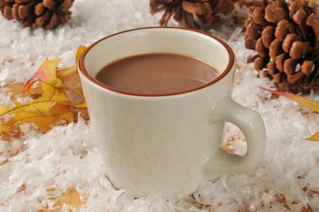 chocolate caliente: Una taza de chocolate caliente en una mesa de madera cubierto de nieve con piñas y hojas de otoño