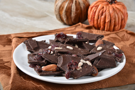 Gourmet choclate bark with cranberries, almonds and sunflower seeds. Stock Photo