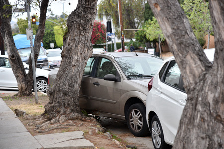 A car pushed into a tree after an automobile accident