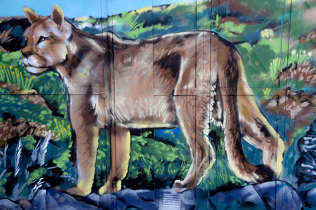 Feb 18., 2018 - A mural depicting a Puma, painted on a wall on the Patagonian town of Punta Arenas, Chile Standard-Bild - 100212469