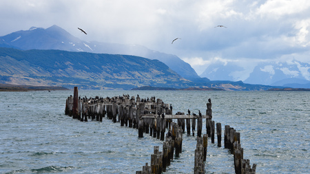 The Old Pier (Muelle Historico) in Almirante Montt Gulf in Patagonia - Puerto Natales, Magallanes Region, Chile 스톡 콘텐츠