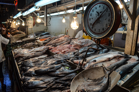 Fresh Fish and seafood for sale in the Mercado Central, Santiago, Chile