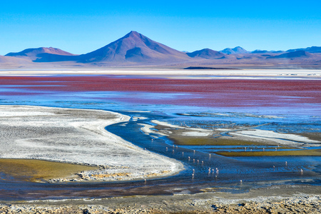 Laguna Colorada de Uyuni, Reserva Eduardo Avaroa, Bolivia