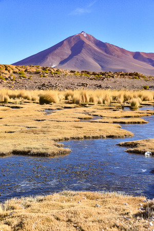 High altitude marshlands and volcanic landscapes near Quetana Grande in the Eduardo Avaroa National Reserve, Bolivia