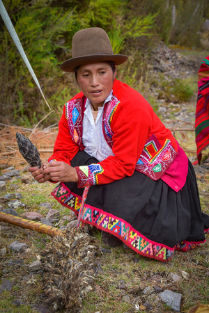 Sacred Valley, Cusco, Peru - Oct 13, 2018: Indigenous Quechua lady with Achupalla plants in the Yachaq community of Janac Chuquibamba Zdjęcie Seryjne - 124999829