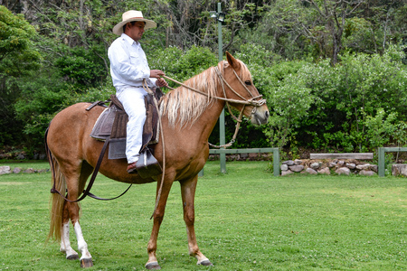 Hacienda Huayoccari, Cusco, Peru - Oct 13, 2018: Peruvian Paso Horse demonstration Banco de Imagens - 124999853