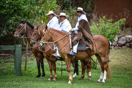 Hacienda Huayoccari, Cusco, Peru - Oct 13, 2018: Peruvian Paso Horse demonstration Archivio Fotografico - 124999849