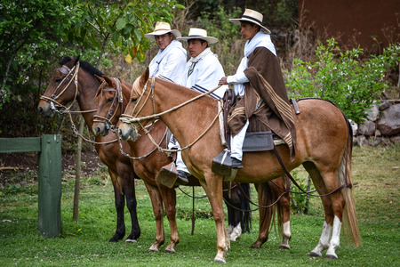 Hacienda Huayoccari, Cusco, Peru - Oct 13, 2018: Peruvian Paso Horse demonstration