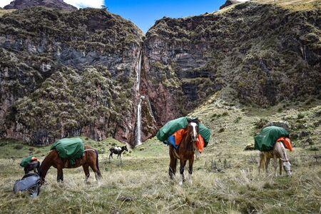 Waterfall in the Qesqa Valley on the Ancasocha trek. Cusco, Peru Zdjęcie Seryjne