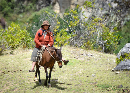 A Quechua lady rides her mule on the Inca Trail, Cusco, Peru