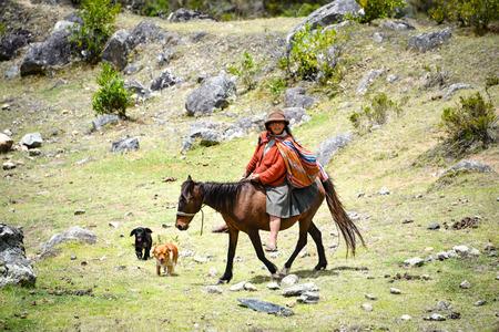 A Quechua lady rides her mule on the Inca Trail, Cusco, Peru Publikacyjne