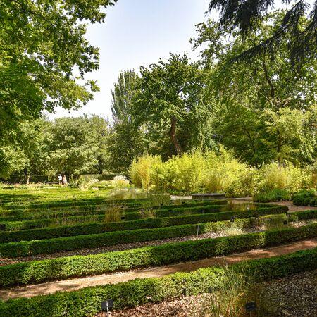 Royal Botanical Gardens (Real Jardin Botanico)