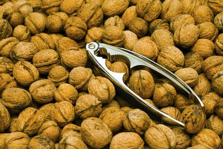 nut cracker: Walnuts with a metal nut cracker Stock Photo