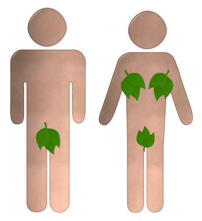 nude male: Toilet sign with an illustrated nude male and female with their private parts covered with leaves on and isolated white background with a clipping path Stock Photo