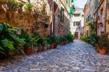 Plant Street in Valldemossa, Majorca Stock Photo