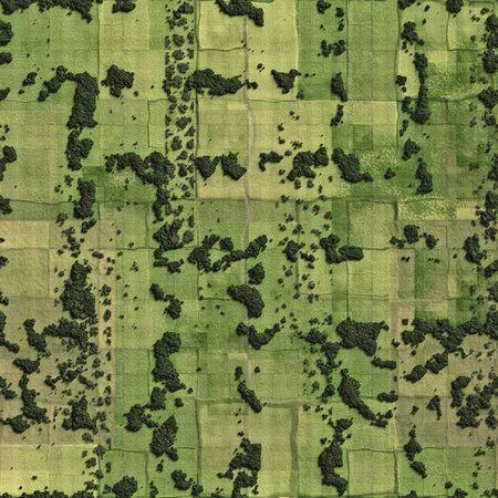 Un ejemplo de campos y prados de aves opinión  Foto de archivo - 3353783
