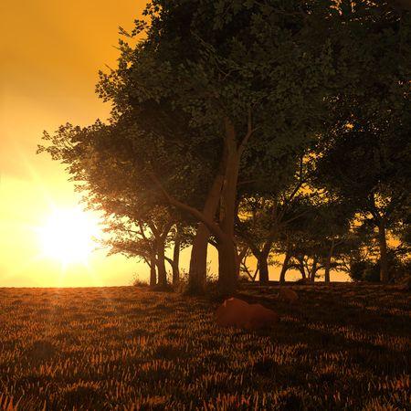 An illustration of a beautiful golden sunset forest