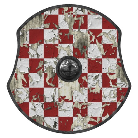 An illustration of a medieval viking shield