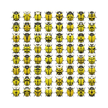 An illustration of 64 different yellow bugs Фото со стока