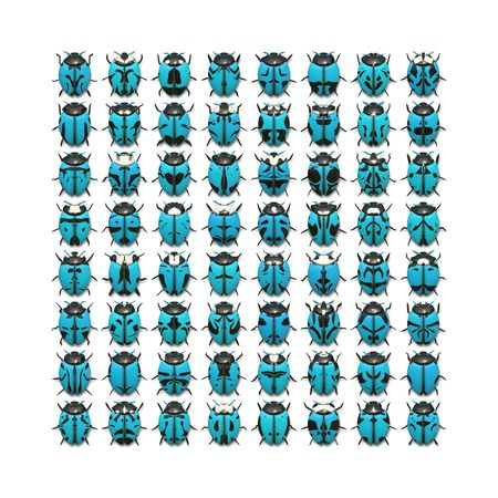 rear wing: An illustration of 64 different blue bugs Stock Photo
