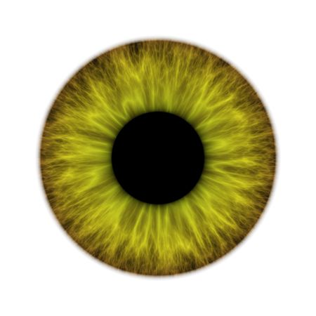 brown eyes: An illustration of a green isolated iris Stock Photo