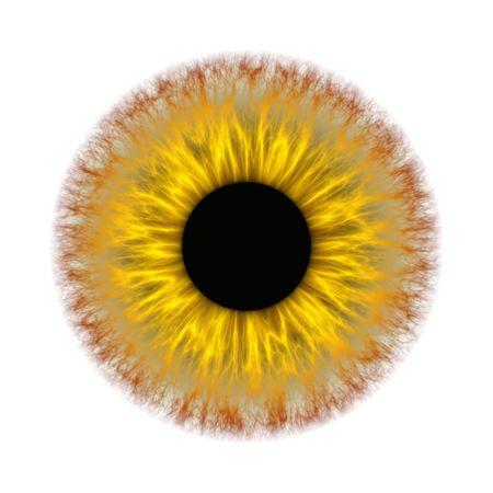 Una ilustración de un espeluznante iris amarillo