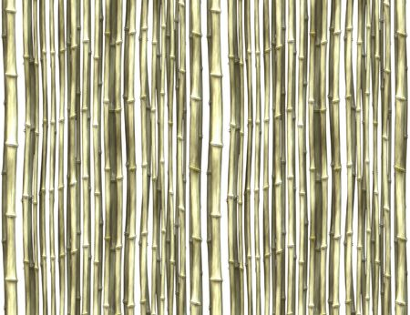 An illustration of a bright bamboo background illustration
