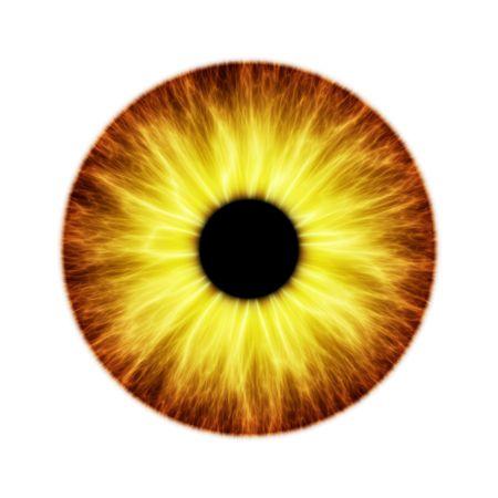 globo ocular: Una ilustraci�n de un hermoso color del iris