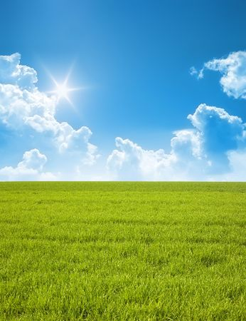 A photography of a blue sky and a green field photo