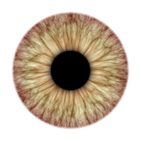 eyes wide: An illustration of a nice iris texture