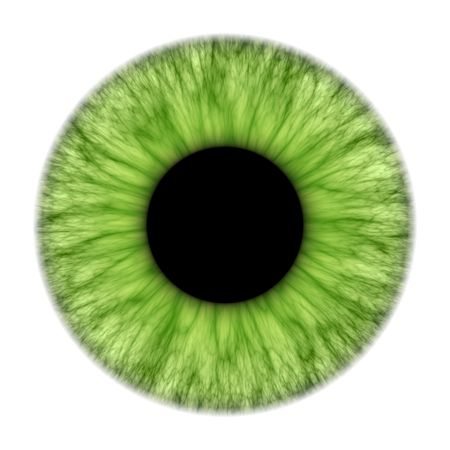 eyes wide: An illustration of a nice green iris texture