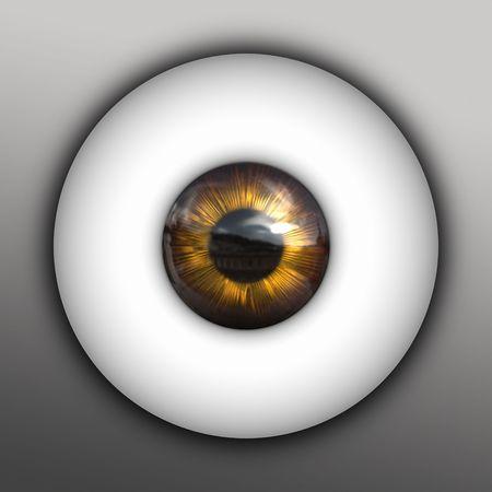 An illustration of a nice golden iris Stock Illustration - 5987823