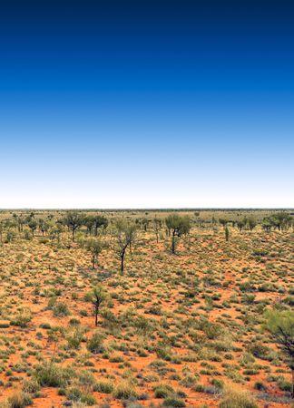 australia outback with a deep blue sky photo