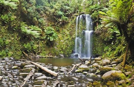 A rain forest waterfall photo