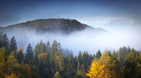 An image of a beautiful landscape with fog in bavaria germany Stock Photo - 7957965