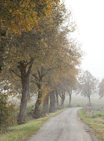 An image of a beautiful landscape with fog in bavaria germany Stock Photo - 7958535