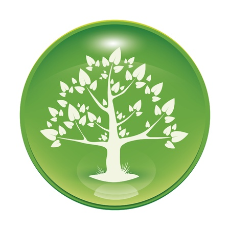 a green glossy icon with a tree Stock Photo - 8554681