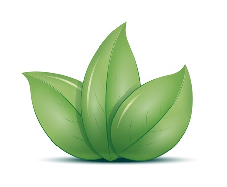 An image of three green leafs icon Stock Photo - 8621705