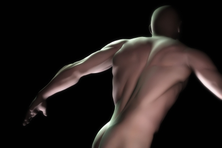 An image of a muscular male torso Stock Photo - 8621736