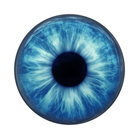irises: An image of a blue eye ball glass