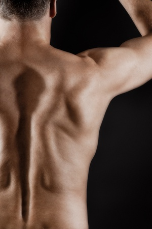 back training: An image of a muscular male back Stock Photo