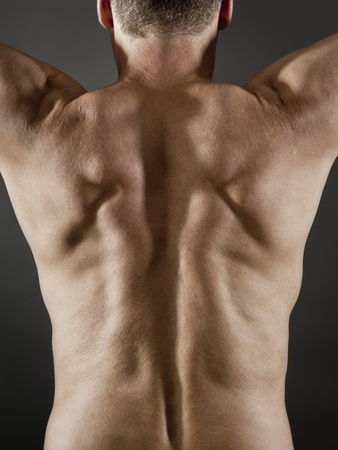 hairy arms: An image of a middle age man back side