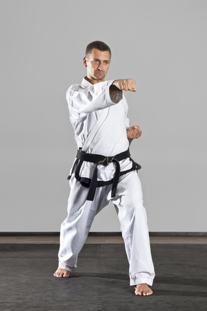 An image of a martial arts master photo