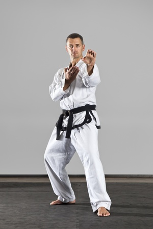 An image of a martial arts master Stock Photo - 10457979