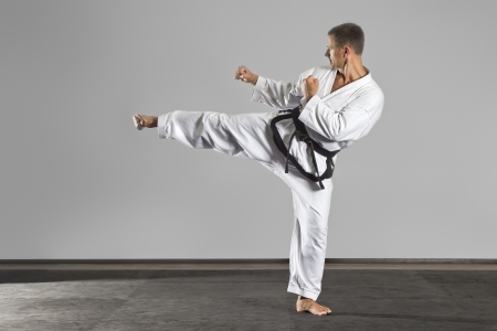 martial art: An image of a martial arts master
