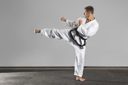 art activity: An image of a martial arts master