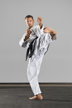 karate fighter: An image of a martial arts master