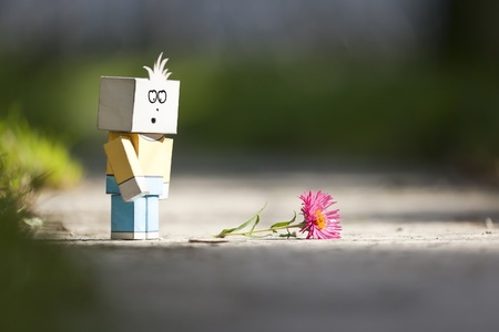 An image of a handmade sad character and a flower photo