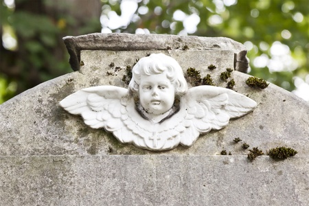 An image of a beautiful angel face photo