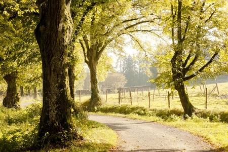 natural landscape: An image of a nice autumn landscape Stock Photo